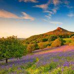 Iconic landmark North York Moors National Park
