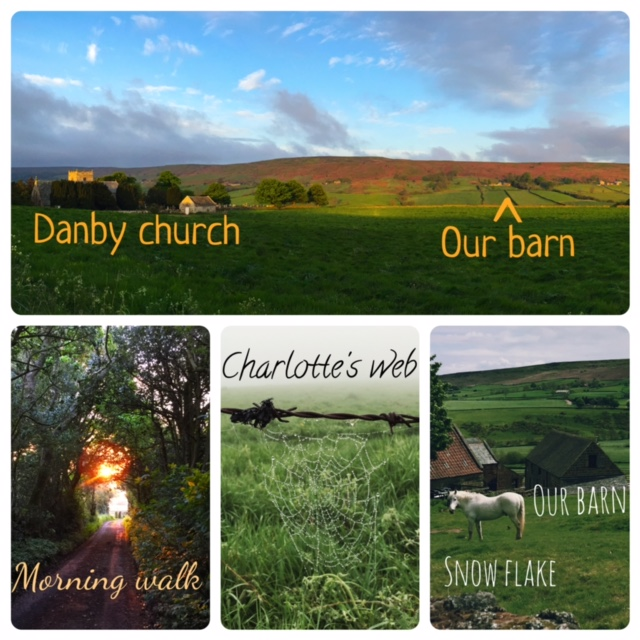 Holiday in North York Moors