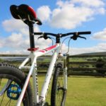 Bike fanatics feel at home!